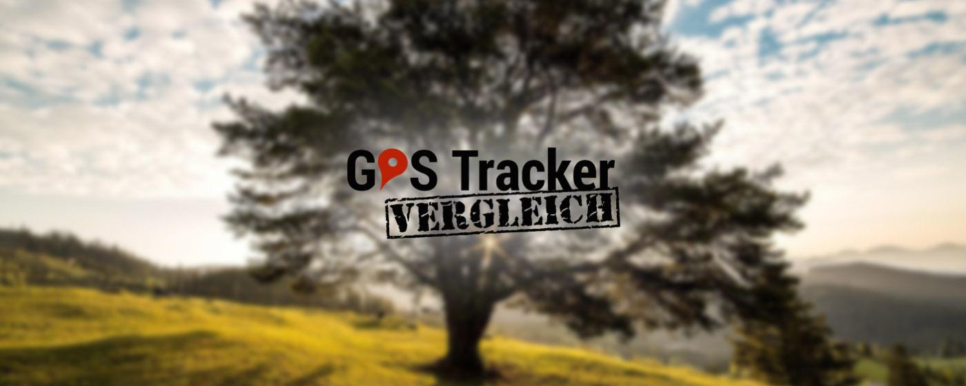 GPS Tracker Vergleich Logo vor Baum